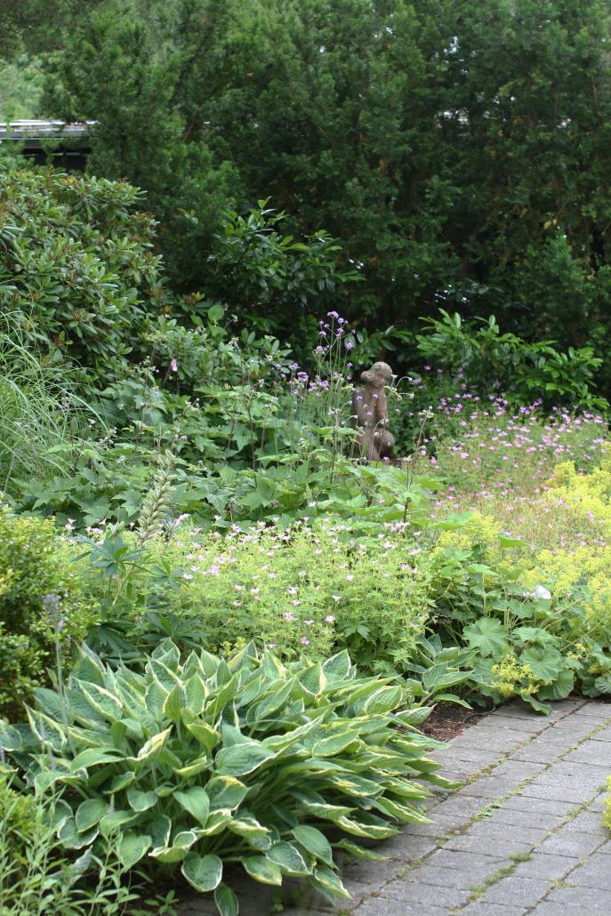 IMG_2907_trädgård